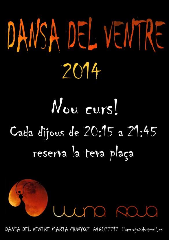 cartell desemre 2013